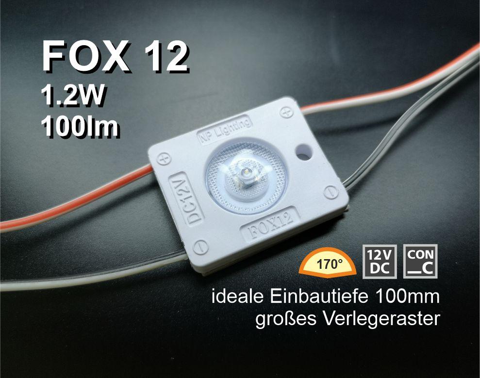 FOX 12 – LED Modulkette
